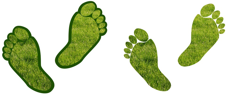 Carbon zero footprint