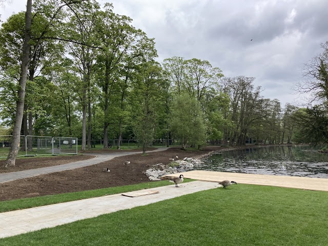 Boultham Park Lake restoration works taking shape